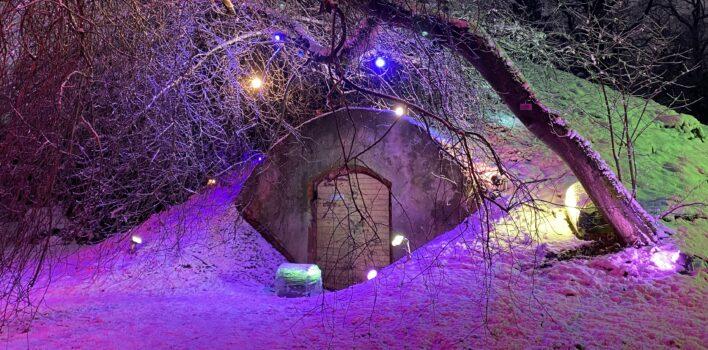 """LKK absolvents iegūst 1. vietu LU Botāniskā dārza """"Ziemas Gaismas dārzs"""" konkursā"""